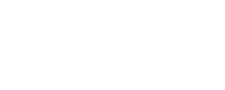 Q Pro Logo